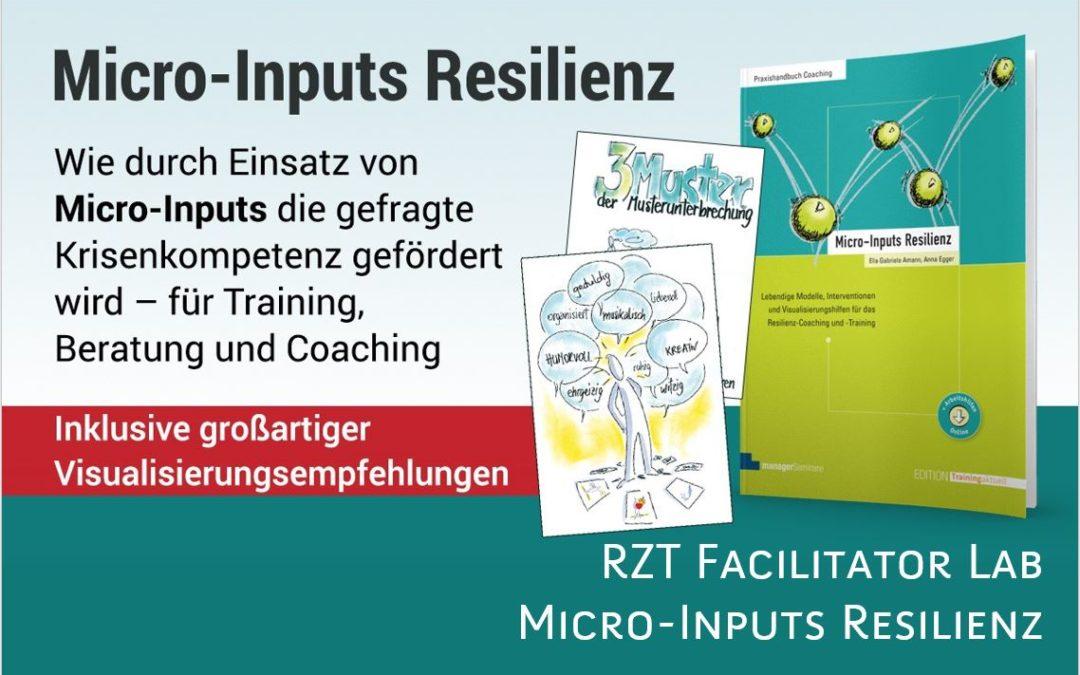 RZT Faclitator Lab - Micro Inputs Resilienz